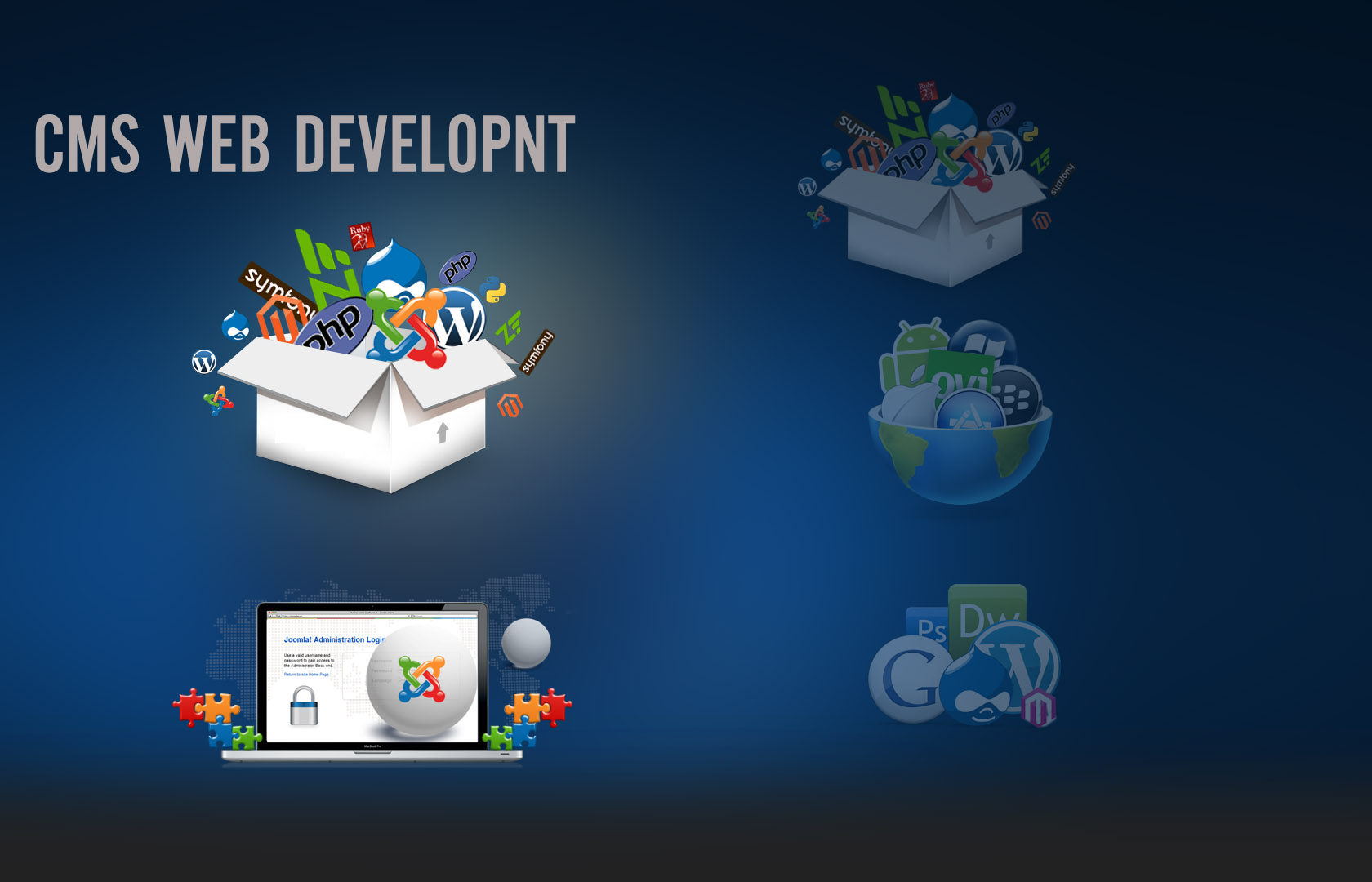 cms web development hyderabad